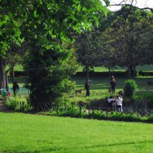 Villa Ada Savoia