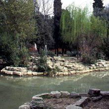 Parco Nemorense o Virgiliano